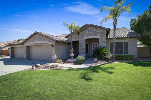 6833 W Grovers Avenue, Glendale, AZ 85308 (MLS #5928721) :: CC & Co. Real Estate Team