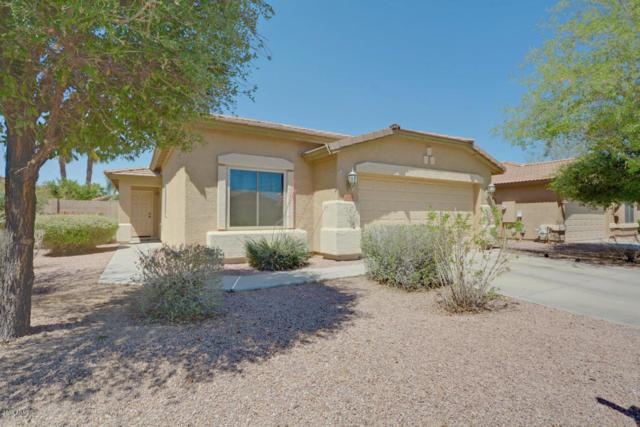 2050 W Hayden Peak Drive, Queen Creek, AZ 85142 (MLS #5928724) :: CC & Co. Real Estate Team
