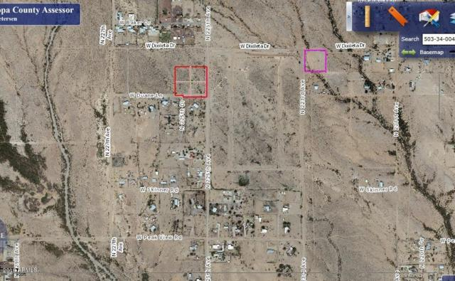 225xx W Duane Lane, Wittmann, AZ 85361 (MLS #5928725) :: Revelation Real Estate