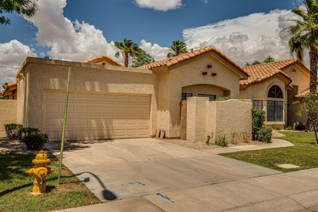 3728 N Carnation Lane, Avondale, AZ 85392 (MLS #5928729) :: CC & Co. Real Estate Team