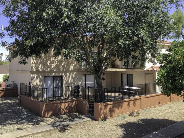 15650 N 19TH Avenue #1196, Phoenix, AZ 85023 (MLS #5928783) :: CC & Co. Real Estate Team