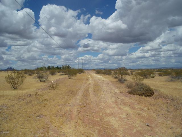 30579 W Redbird Road, Unincorporated County, AZ 85361 (MLS #5928791) :: Conway Real Estate