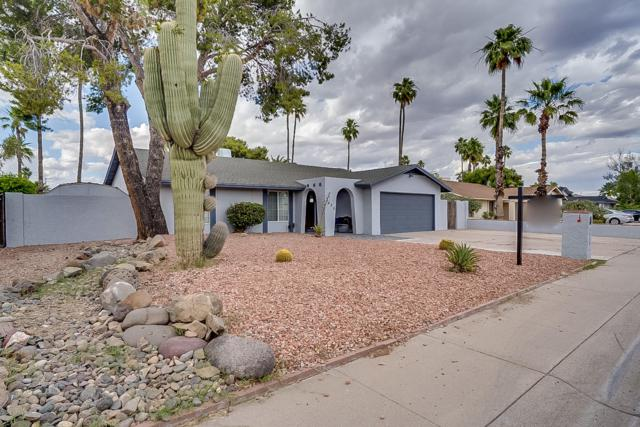 3420 E Windrose Drive, Phoenix, AZ 85032 (MLS #5928808) :: Realty Executives