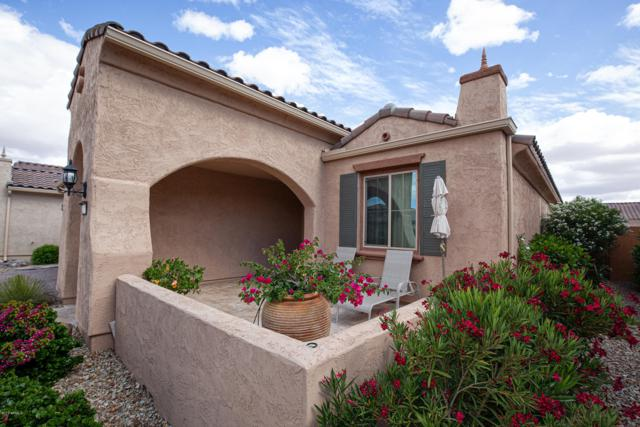 26824 W Piute Avenue, Buckeye, AZ 85396 (MLS #5928826) :: CC & Co. Real Estate Team