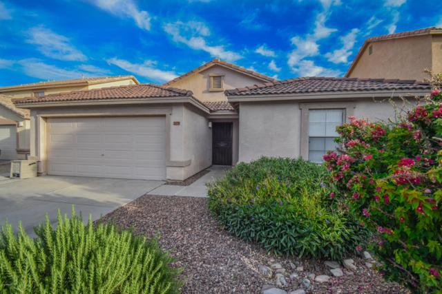 2179 E Haflinger Way E, San Tan Valley, AZ 85140 (MLS #5928841) :: CC & Co. Real Estate Team