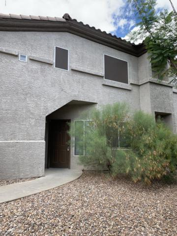 3236 E Chandler Boulevard #1009, Phoenix, AZ 85048 (MLS #5928844) :: CC & Co. Real Estate Team