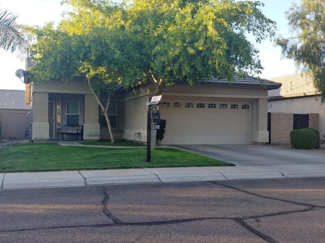 12388 W Grant Street, Avondale, AZ 85323 (MLS #5928873) :: Occasio Realty