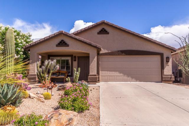 4505 E Coyote Wash Drive, Cave Creek, AZ 85331 (MLS #5928874) :: CC & Co. Real Estate Team