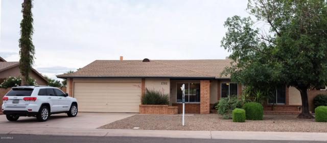 1702 W Mcnair Street, Chandler, AZ 85224 (MLS #5928884) :: CC & Co. Real Estate Team