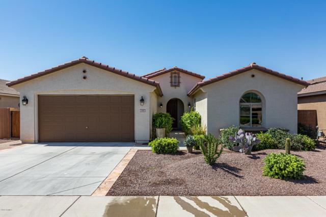197 W Sweet Shrub Avenue, San Tan Valley, AZ 85140 (MLS #5928897) :: CC & Co. Real Estate Team