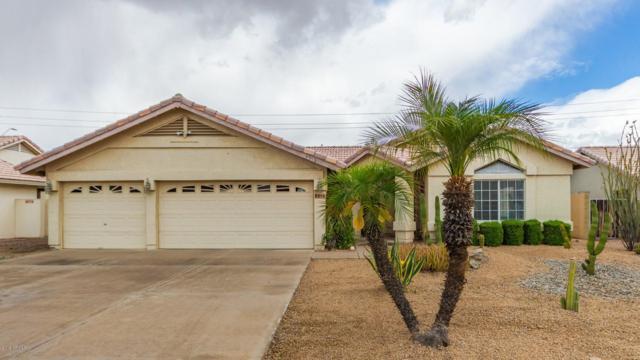 4318 E Karen Drive, Phoenix, AZ 85032 (MLS #5928938) :: Occasio Realty