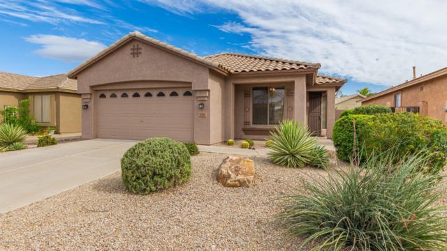898 E Cathy Drive, Gilbert, AZ 85296 (MLS #5928940) :: CC & Co. Real Estate Team