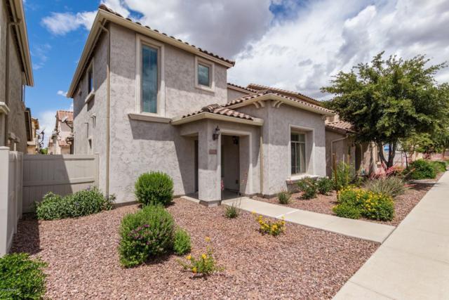 1924 W Faria Lane, Phoenix, AZ 85023 (MLS #5928951) :: CC & Co. Real Estate Team