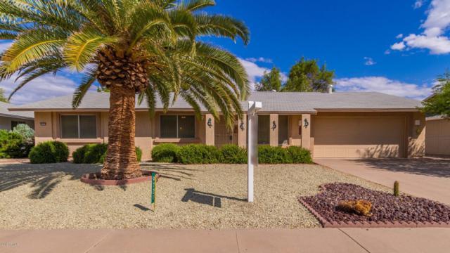 9721 W Hassayampa Drive, Sun City, AZ 85373 (MLS #5928964) :: The Kenny Klaus Team