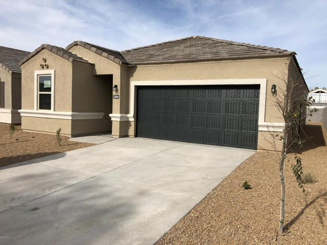 17875 N Pietra Road, Maricopa, AZ 85138 (MLS #5928985) :: CC & Co. Real Estate Team
