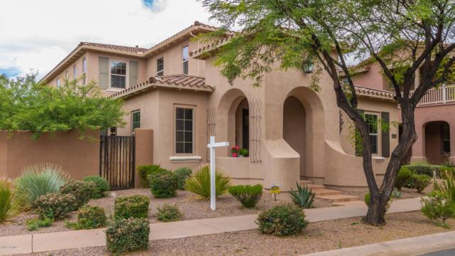 18362 N 94TH Place, Scottsdale, AZ 85255 (MLS #5929006) :: Riddle Realty