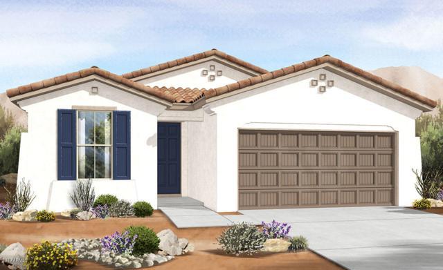 4035 W Coles Road, Laveen, AZ 85339 (MLS #5929012) :: Home Solutions Team