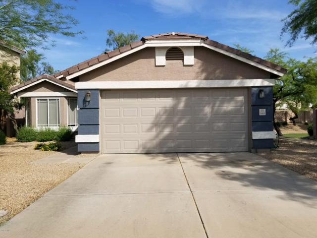 16036 N 11TH Avenue #1063, Phoenix, AZ 85023 (MLS #5929032) :: Occasio Realty