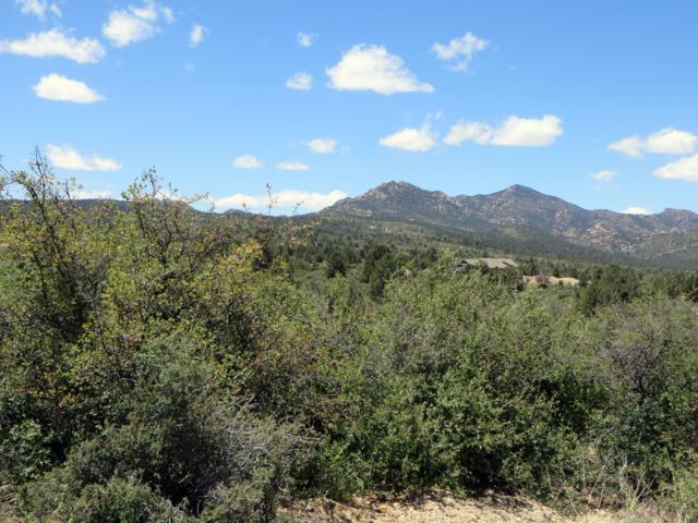 16790 W Blue Sky Drive, Peeples Valley, AZ 86332 (MLS #5929039) :: Yost Realty Group at RE/MAX Casa Grande