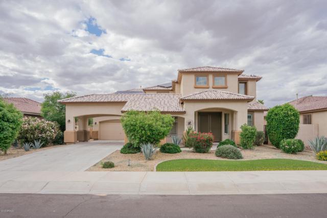 15112 W Minnezona Avenue, Goodyear, AZ 85395 (MLS #5929045) :: CC & Co. Real Estate Team