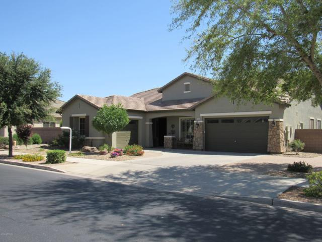 19113 E Mockingbird Drive, Queen Creek, AZ 85142 (MLS #5929046) :: CC & Co. Real Estate Team