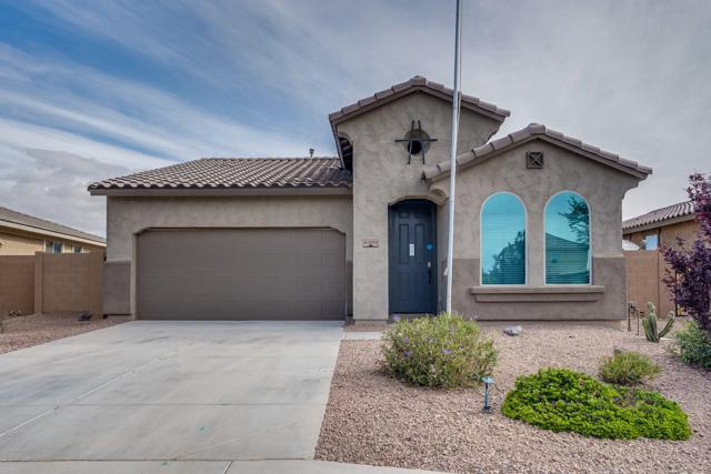 41204 W Elm Drive, Maricopa, AZ 85138 (MLS #5929061) :: Openshaw Real Estate Group in partnership with The Jesse Herfel Real Estate Group