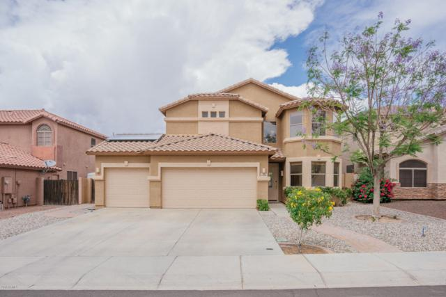 6766 W Lariat Lane, Peoria, AZ 85383 (MLS #5929076) :: Lux Home Group at  Keller Williams Realty Phoenix