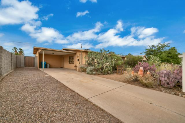2314 E Sylvia Street, Phoenix, AZ 85022 (MLS #5929079) :: The W Group