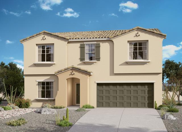 21170 W Holly Street, Buckeye, AZ 85396 (MLS #5929084) :: Brett Tanner Home Selling Team