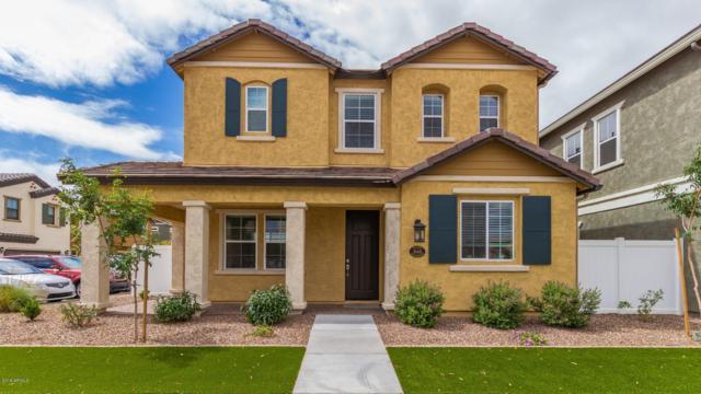 10443 E Naranja Avenue, Mesa, AZ 85209 (MLS #5929087) :: CC & Co. Real Estate Team