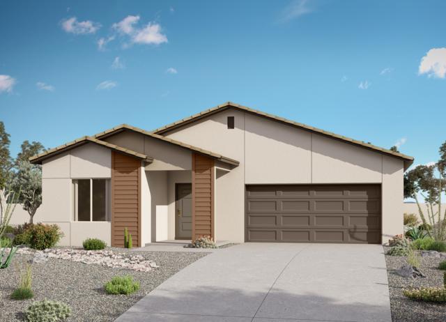 21191 W Holly Street, Buckeye, AZ 85396 (MLS #5929090) :: Brett Tanner Home Selling Team