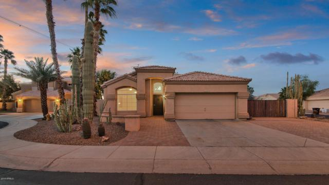 6552 W Shannon Court, Chandler, AZ 85226 (MLS #5929126) :: CC & Co. Real Estate Team