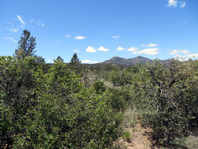 16790 W Blue Sky -2 Drive, Peeples Valley, AZ 86332 (MLS #5929153) :: Brett Tanner Home Selling Team
