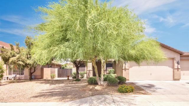 11066 E Cholla Road, Mesa, AZ 85207 (MLS #5929187) :: Lux Home Group at  Keller Williams Realty Phoenix