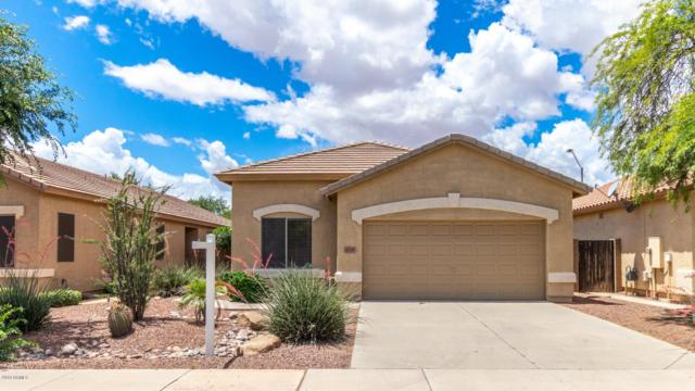 4748 N 126TH Drive, Litchfield Park, AZ 85340 (MLS #5929190) :: The Ford Team