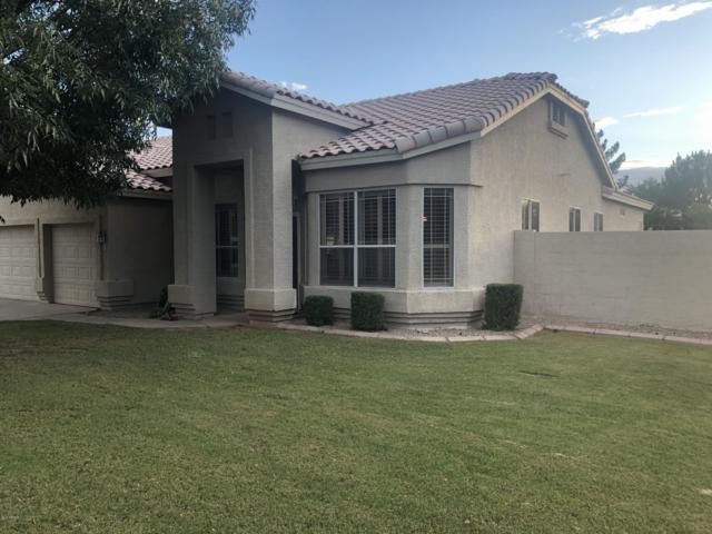 52 S Debra Drive, Gilbert, AZ 85296 (MLS #5929198) :: Brett Tanner Home Selling Team