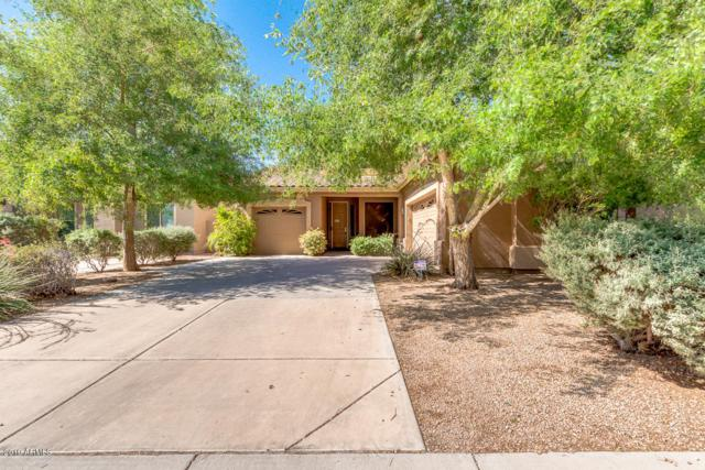1414 E Kesler Lane, Chandler, AZ 85225 (MLS #5929212) :: The Daniel Montez Real Estate Group