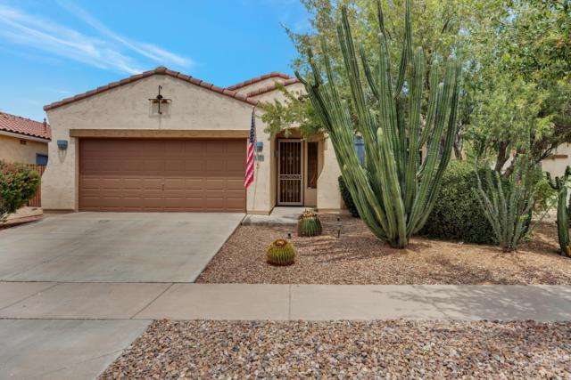 946 E La Costa Place, Chandler, AZ 85249 (MLS #5929252) :: The Daniel Montez Real Estate Group
