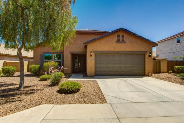 18241 W Townley Avenue, Waddell, AZ 85355 (MLS #5929256) :: Brett Tanner Home Selling Team