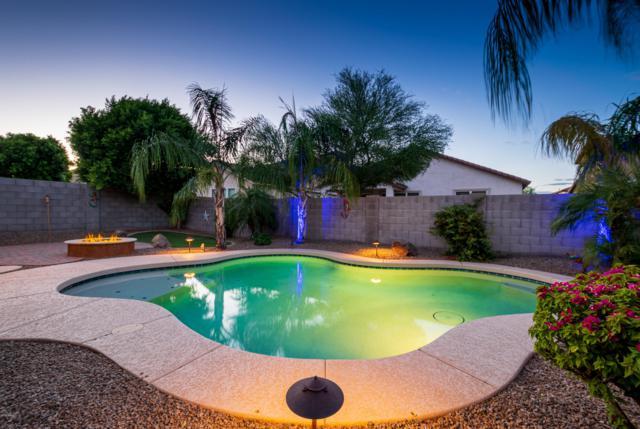 18236 W Hatcher Road, Waddell, AZ 85355 (MLS #5929265) :: The AZ Performance Realty Team
