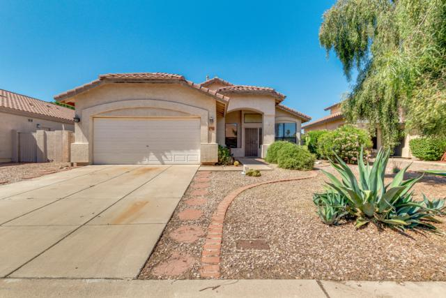 3762 E Irwin Avenue, Mesa, AZ 85206 (MLS #5929286) :: Lux Home Group at  Keller Williams Realty Phoenix