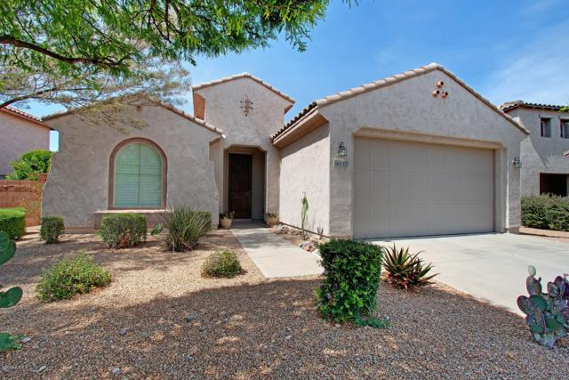 9012 W Buckhorn Trail, Peoria, AZ 85383 (MLS #5929311) :: Team Wilson Real Estate