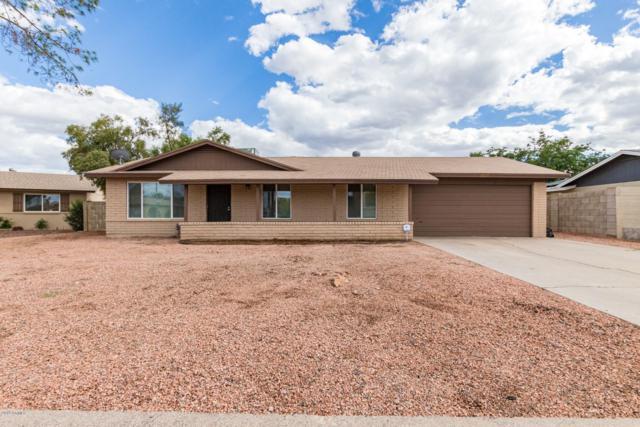 2121 W Maple Drive, Phoenix, AZ 85027 (MLS #5929327) :: CC & Co. Real Estate Team