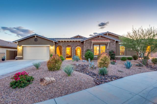 11926 S 181ST Drive, Goodyear, AZ 85338 (MLS #5929331) :: Brett Tanner Home Selling Team