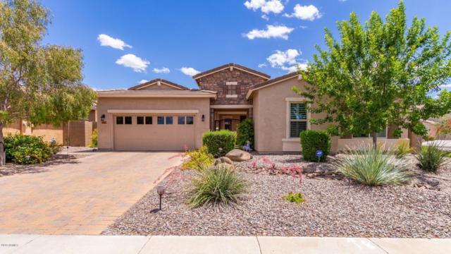 3561 E Chestnut Lane, Gilbert, AZ 85298 (MLS #5929334) :: Brett Tanner Home Selling Team
