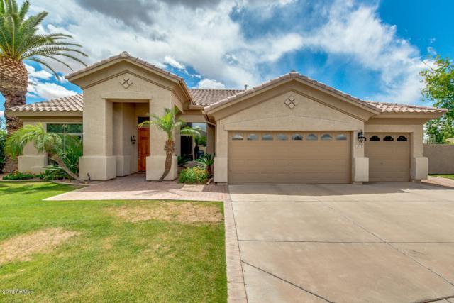 1445 W Rockrose Way, Chandler, AZ 85248 (MLS #5929341) :: Arizona 1 Real Estate Team