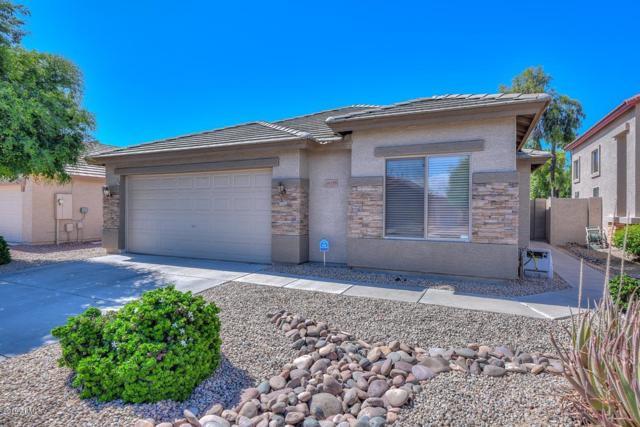 16195 W Cottonwood Street, Surprise, AZ 85374 (MLS #5929354) :: CC & Co. Real Estate Team