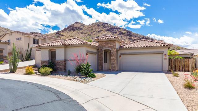 26610 N 59TH Drive, Phoenix, AZ 85083 (MLS #5929368) :: Lux Home Group at  Keller Williams Realty Phoenix