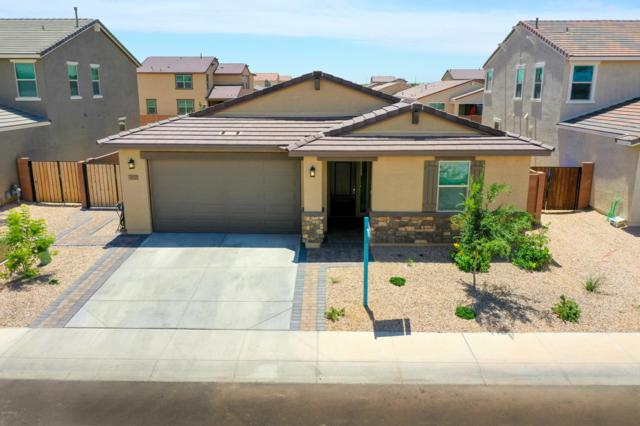 40021 W Brandt Drive, Maricopa, AZ 85138 (MLS #5929369) :: CC & Co. Real Estate Team