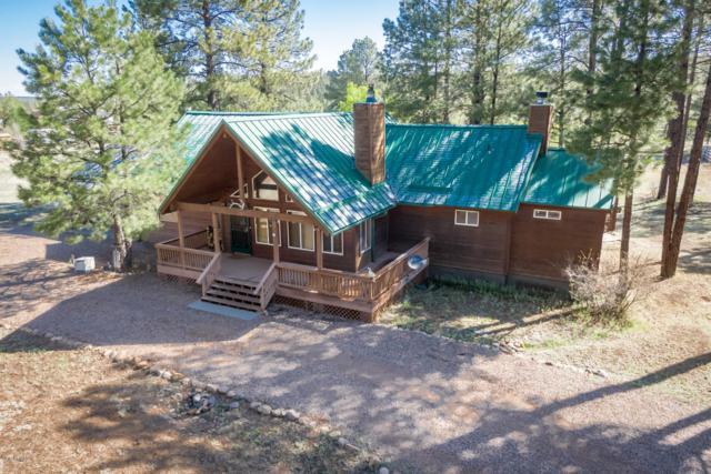 2945 Buckskin Canyon Road, Heber, AZ 85928 (MLS #5929380) :: Brett Tanner Home Selling Team